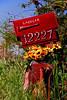 Ozark mailbox